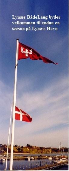 2_flag_11