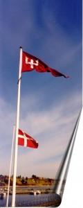2x-flag-m-120x300